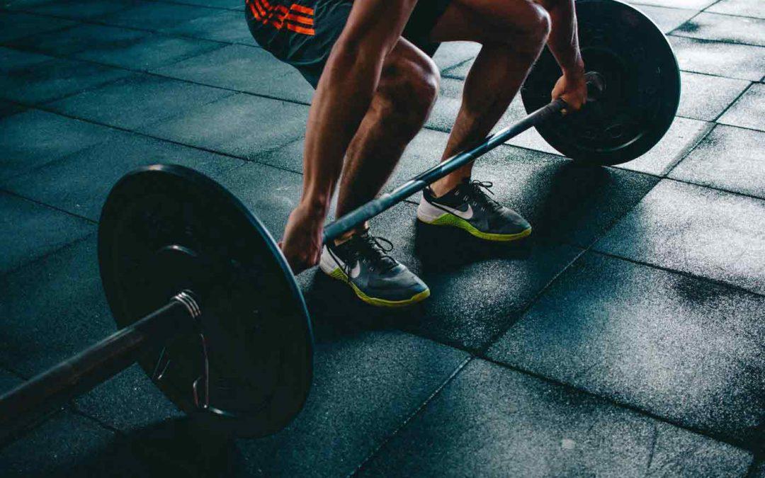 Push Pull Legs Program